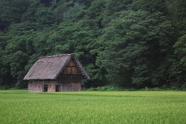 615_つけびの村.jpg